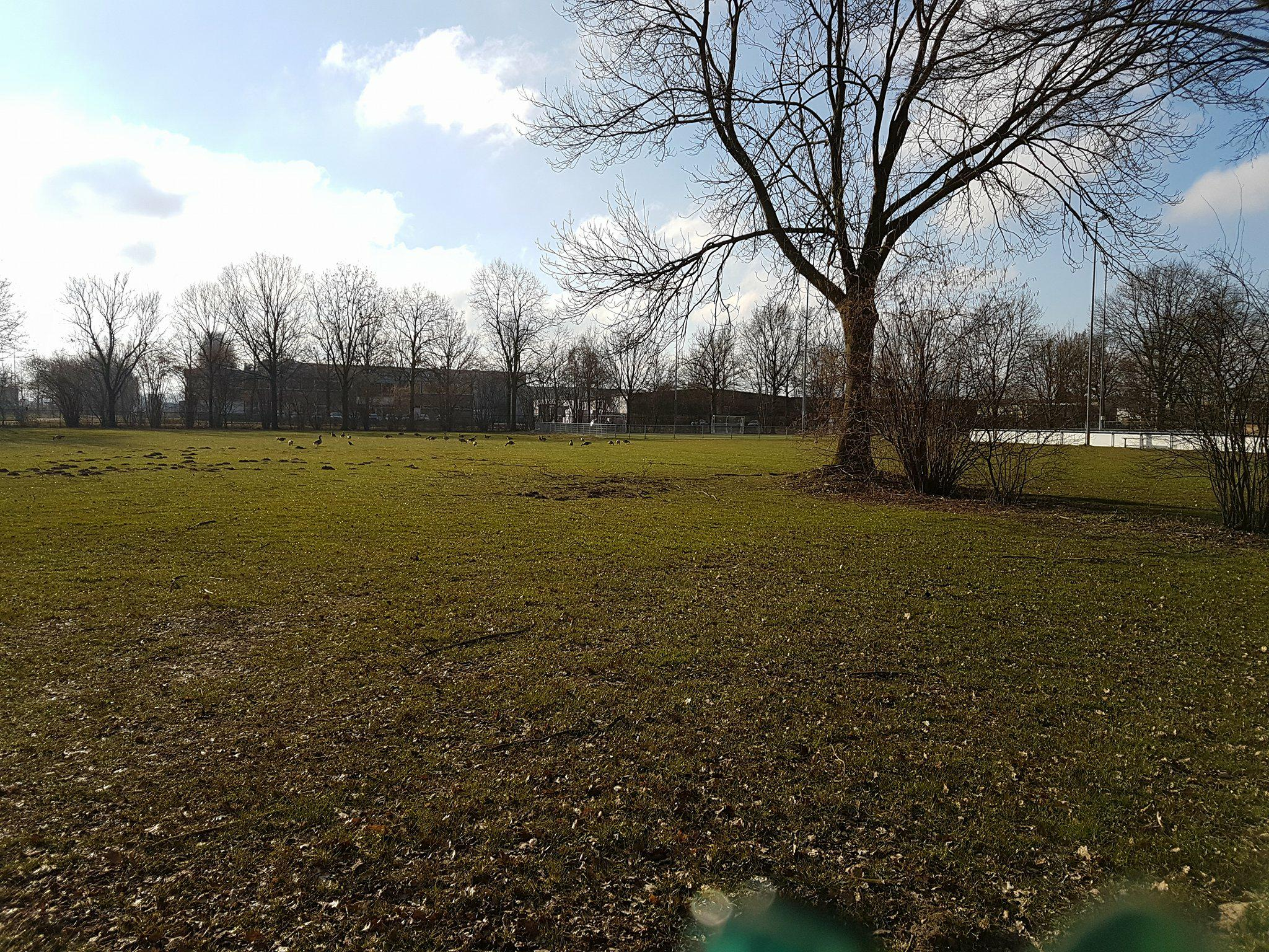 Sportpark De Hengelder Bijveld korfbalclub de Zwaluwen